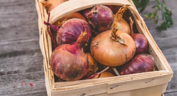 Supporting Immune Health With Quercetin