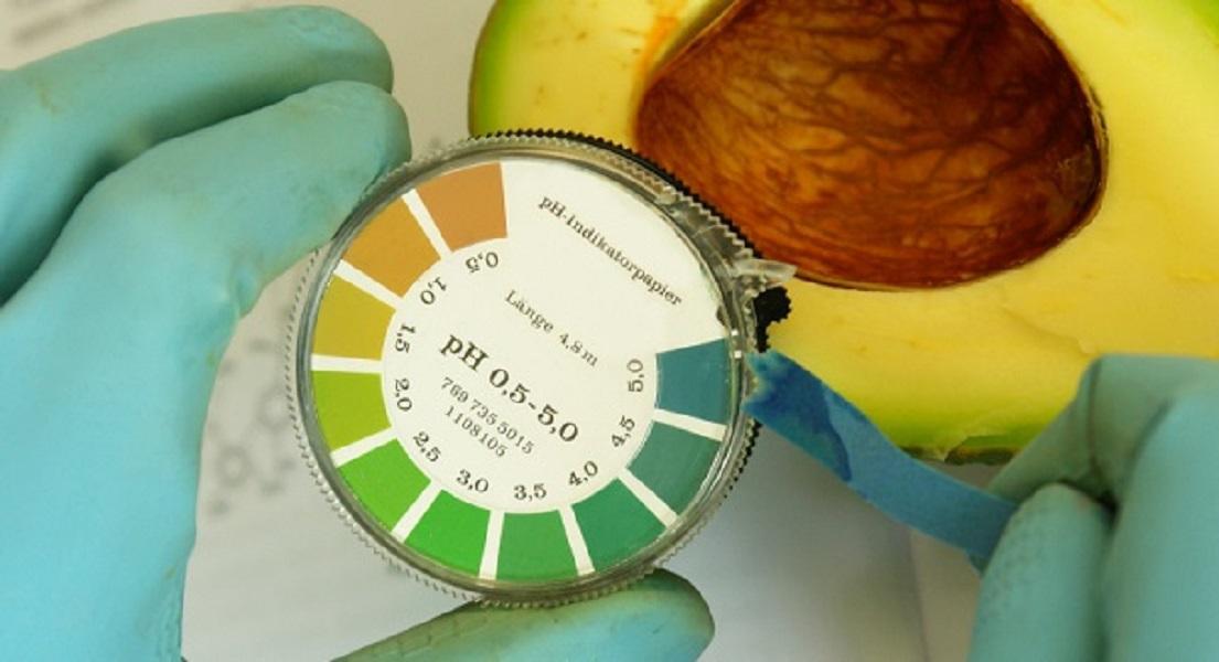 Diet-Induced Cellular Acidosis & Bone Health