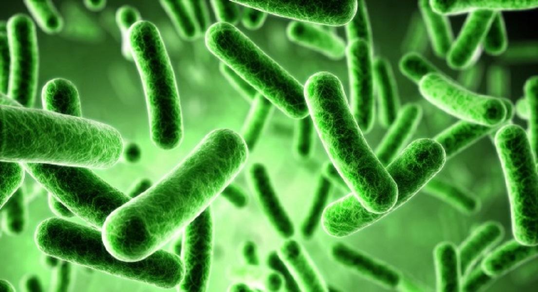 4 Ways Epstein Barr Virus Promotes Autoimmunity