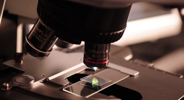 COVID-19 Update: Mapping the Immune Response & Vitamin C