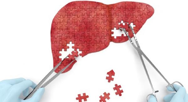 What Your Liver Actually Does...
