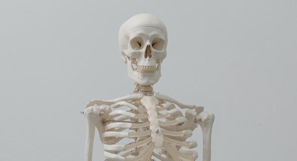 Understanding The Bigger Picture Of Bone Health